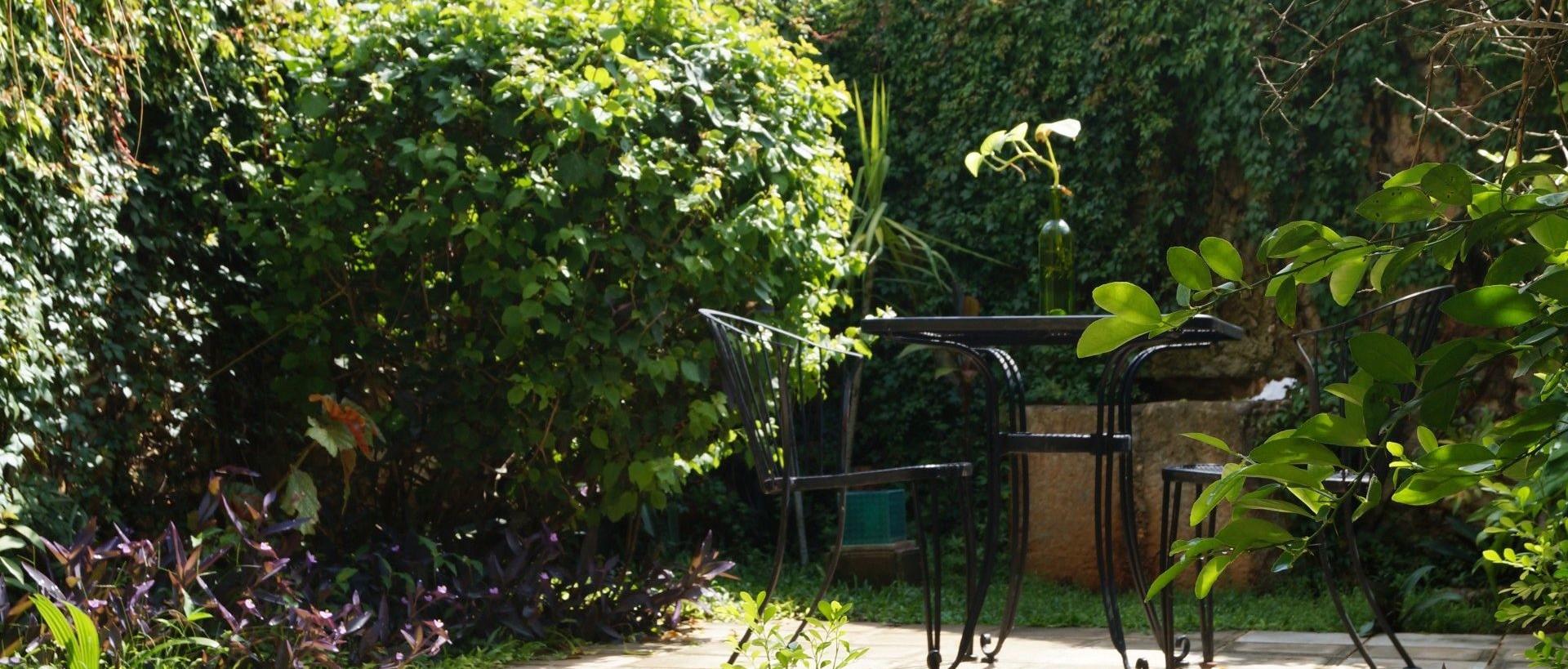 Casa Tía Micha - Hermoso Jardín