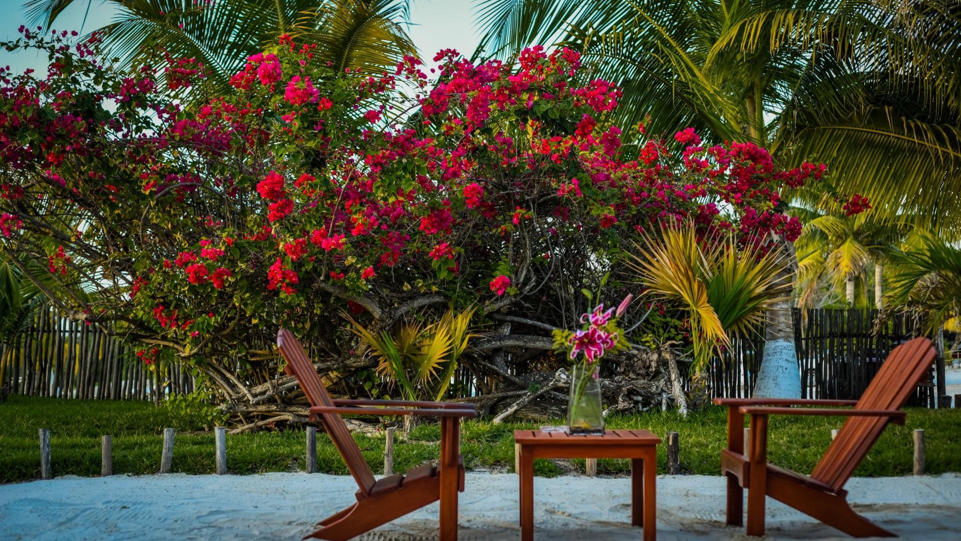 El Paraíso Hotel Tulum