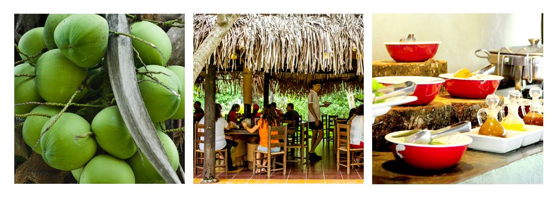 comida típica México, comida típica Veracruz, comer en Jalcomulco