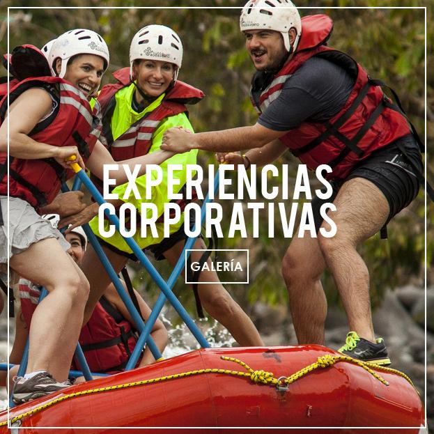 Viajes empresariales en Jalcomulco