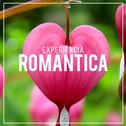 Escapada, Romantico, Selva, Jalcomulco, Veracruz